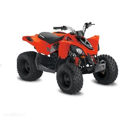 Can-Am DS 90 STD model 2019 - 1