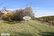 Teren de Vanzare, Cisnadioara, Sibiu - Foto 10