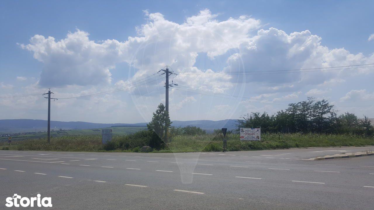 Teren de Vanzare, Iași (judet), Strada Brazil - Foto 10