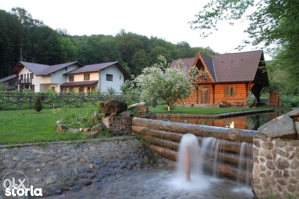 Casa de vanzare, Timiș (judet), Cetate - Foto 1