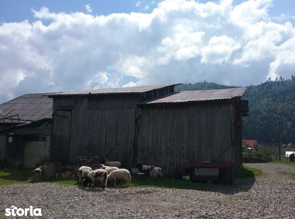 Casa de vanzare, Suceava (judet), Stulpicani - Foto 5