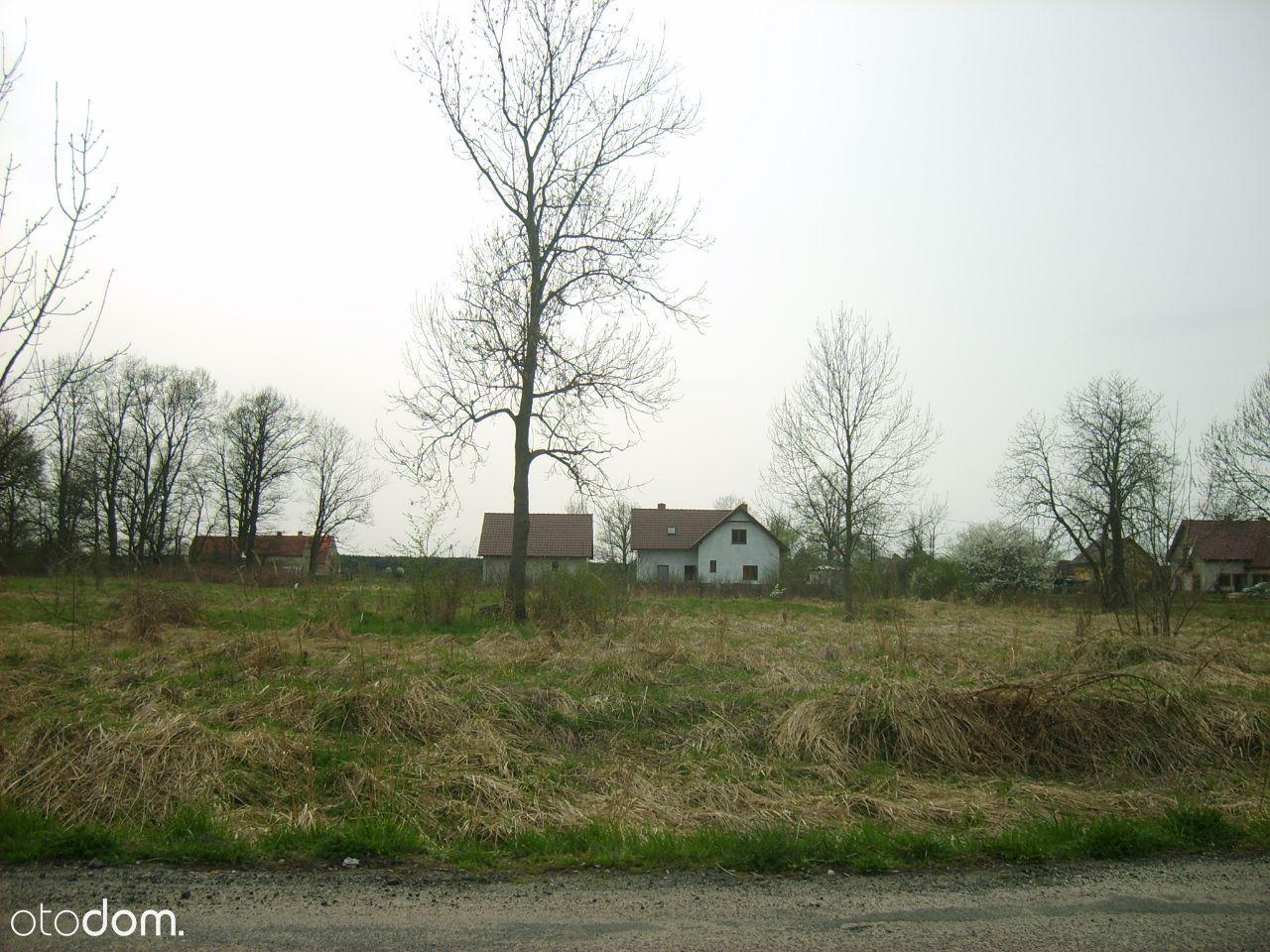 Działka na sprzedaż, Miłogostowice, legnicki, dolnośląskie - Foto 1
