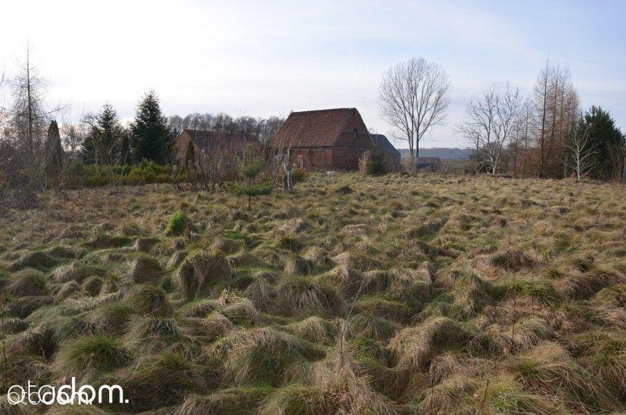 Dom na sprzedaż, Olszyniec, żarski, lubuskie - Foto 20