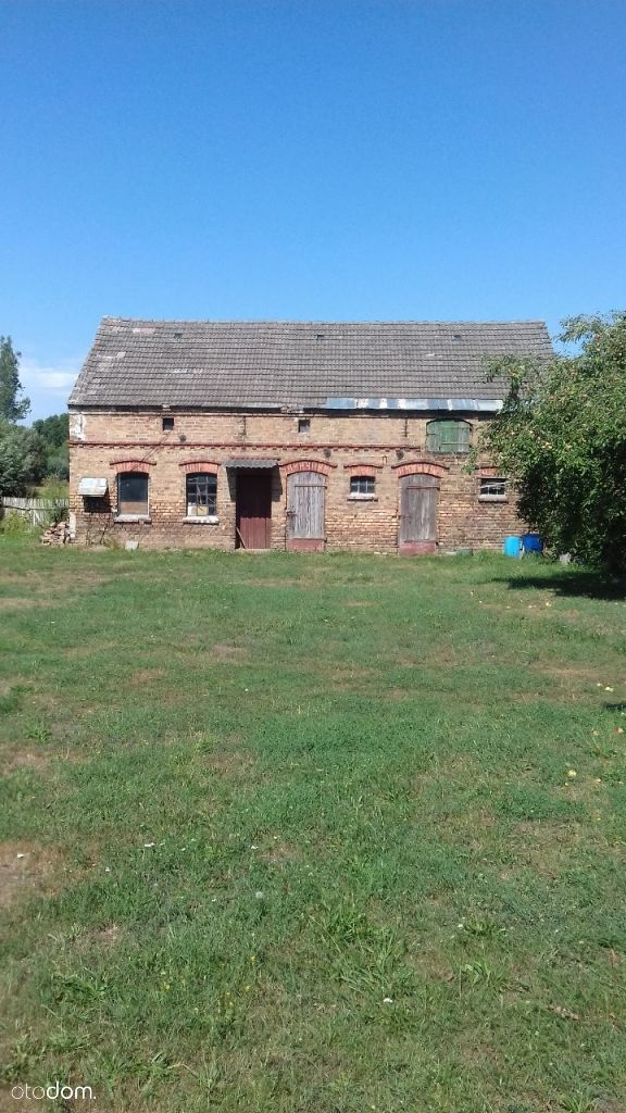 Dom na sprzedaż, Borek, gorzowski, lubuskie - Foto 4