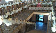 Lokal użytkowy na sprzedaż, Żukowo, kartuski, pomorskie - Foto 6