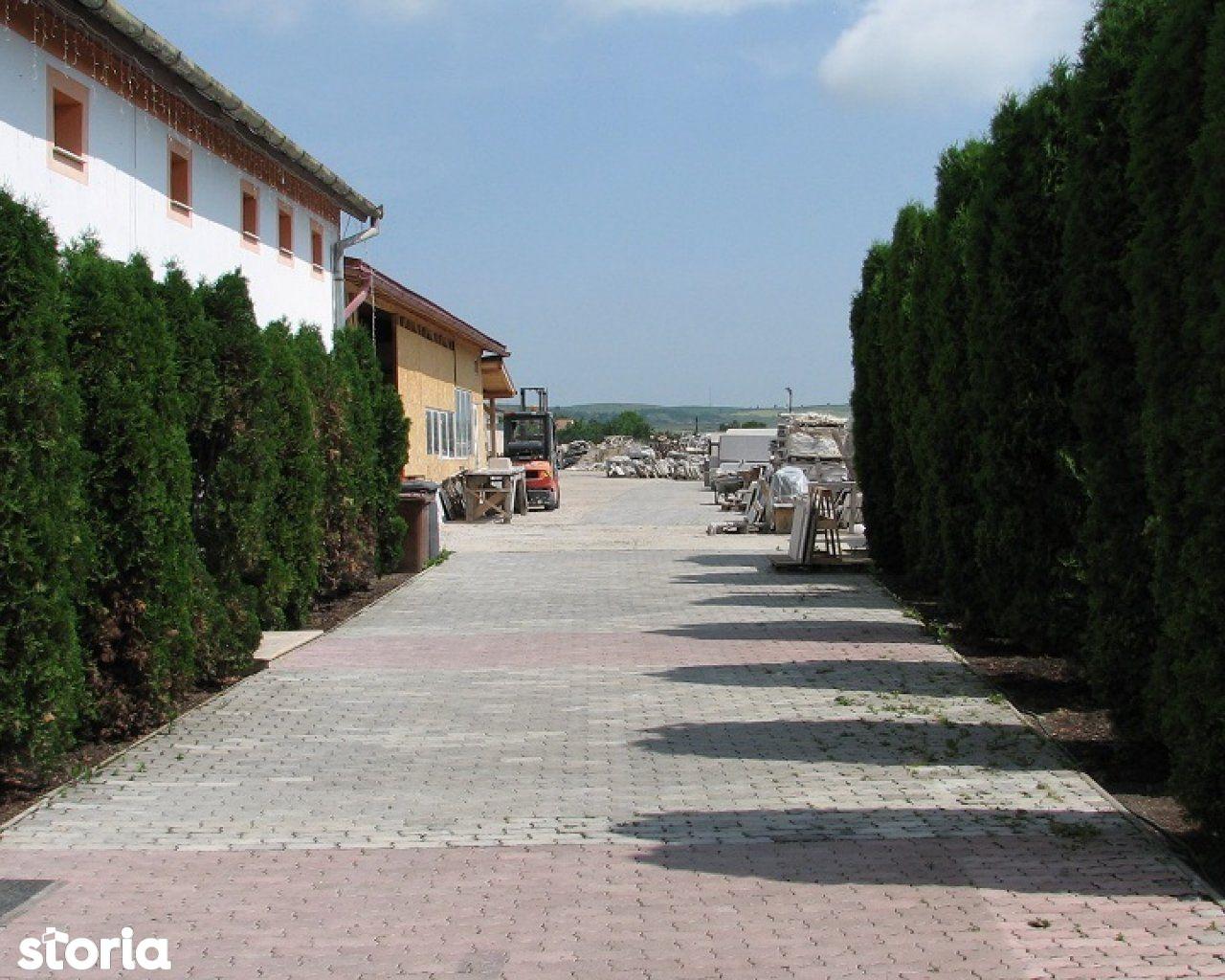 Spatiu Comercial de inchiriat, Cluj (judet), Tureni - Foto 1