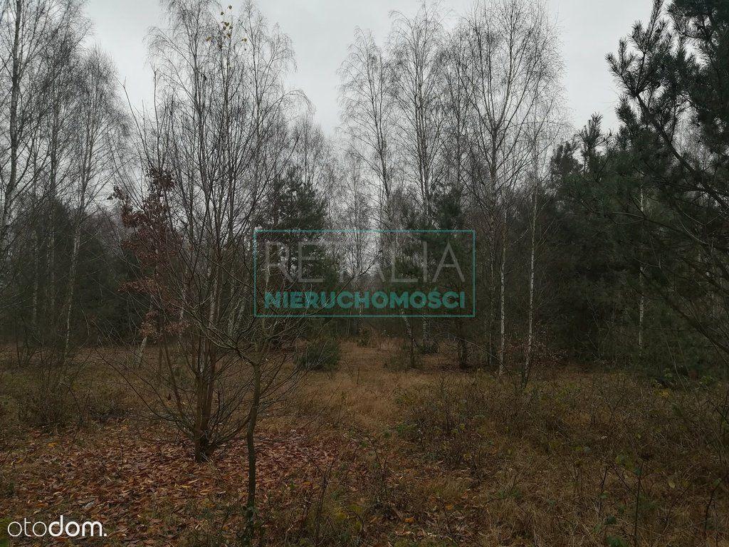Działka na sprzedaż, Budy Michałowskie, grodziski, mazowieckie - Foto 4