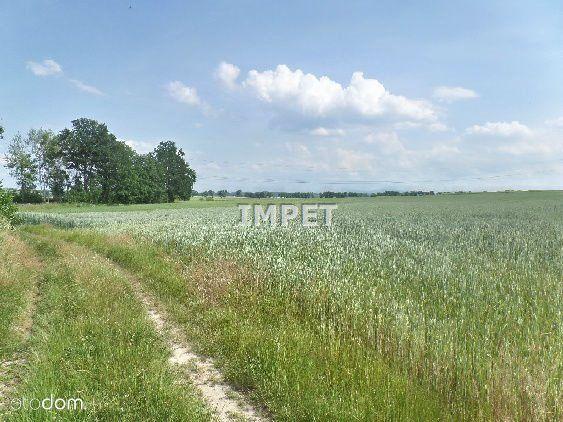 Działka na sprzedaż, Radzimów, zgorzelecki, dolnośląskie - Foto 1