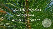 Działka na sprzedaż, Kazuń Polski, nowodworski, mazowieckie - Foto 1