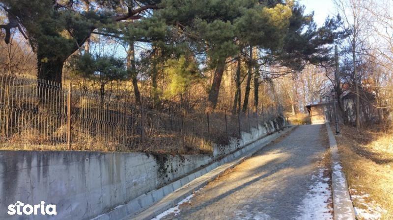 Teren de Vanzare, Prahova (judet), Sinaia - Foto 4