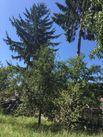 Casa de vanzare, Brașov (judet), Braşov - Foto 10