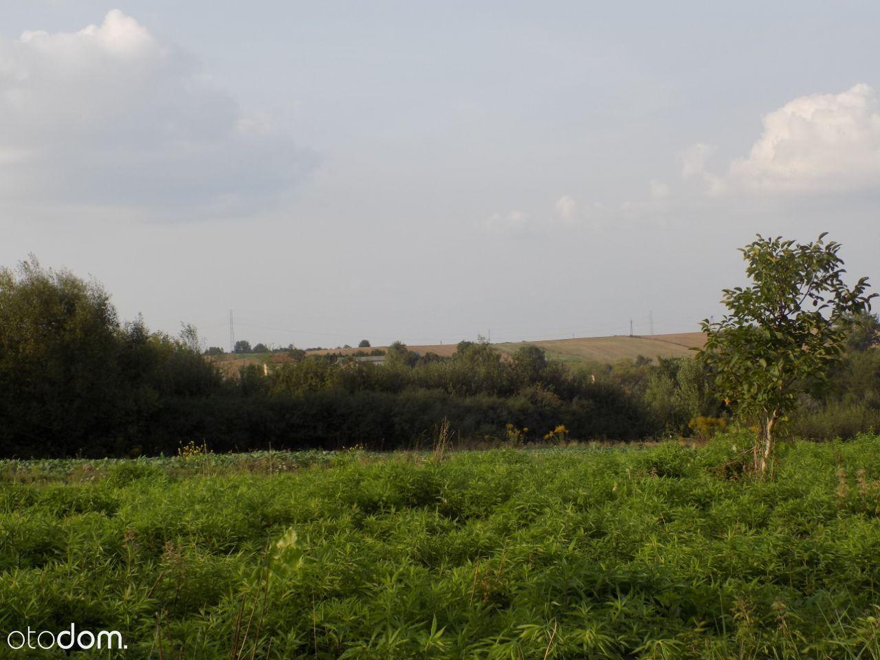 Działka na sprzedaż, Pliszczyn, lubelski, lubelskie - Foto 3