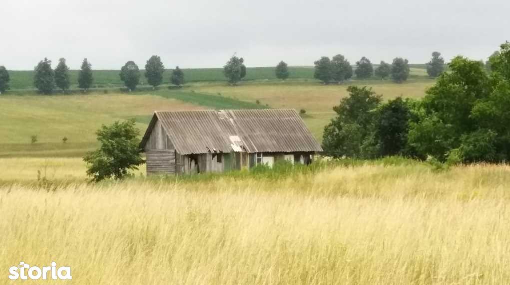 Teren de Vanzare, Suceava (judet), Lipoveni - Foto 3
