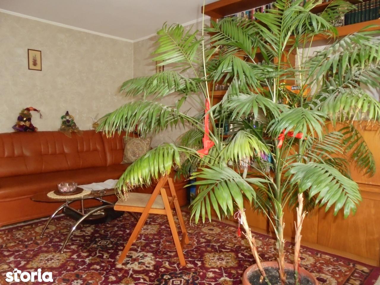 Apartament de vanzare, Vrancea (judet), Focşani - Foto 20