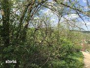 Teren de Vanzare, Hunedoara (judet), Hunedoara - Foto 4
