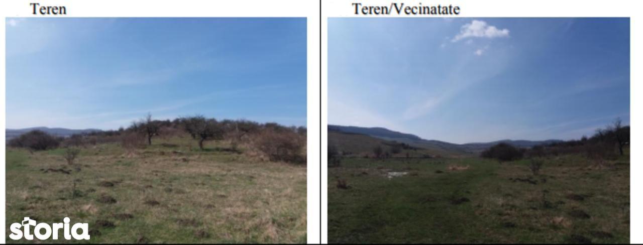 Teren de Vanzare, Bistrița-Năsăud (judet), Strada Zefirului - Foto 2