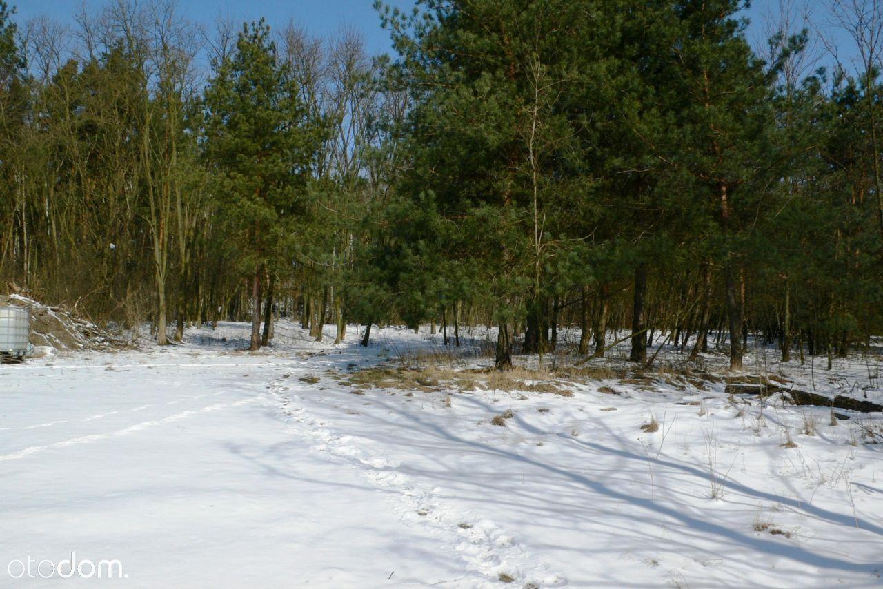 Działka na sprzedaż, Aleksandrów, piaseczyński, mazowieckie - Foto 8