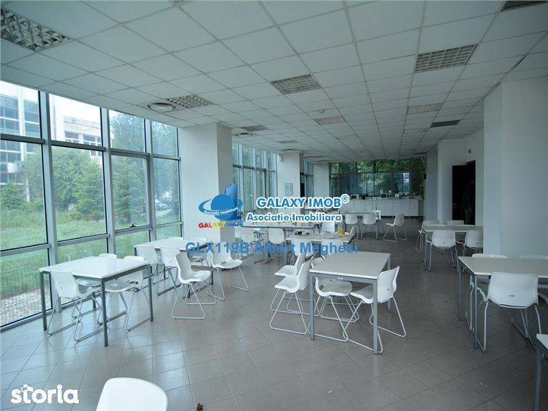 Birou de vanzare, București (judet), Strada Piscul Răchitei - Foto 5