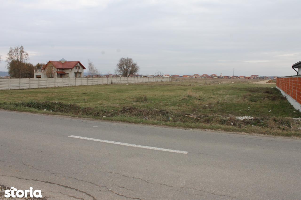 Teren de Vanzare, Bihor (judet), Oradea - Foto 4