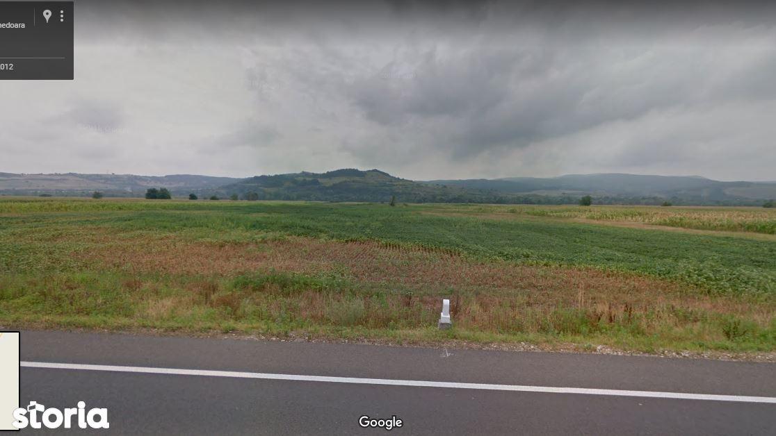 Teren de Vanzare, Hunedoara (judet), Strada Dr. Petru Groza - Foto 1