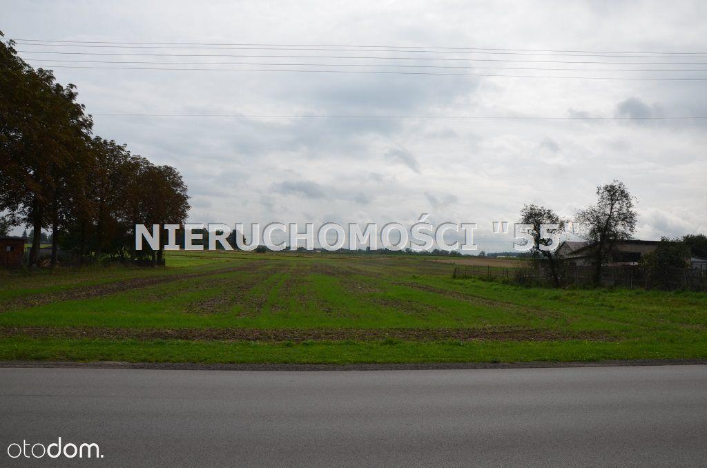 Działka na sprzedaż, Eufeminów, brzeziński, łódzkie - Foto 6