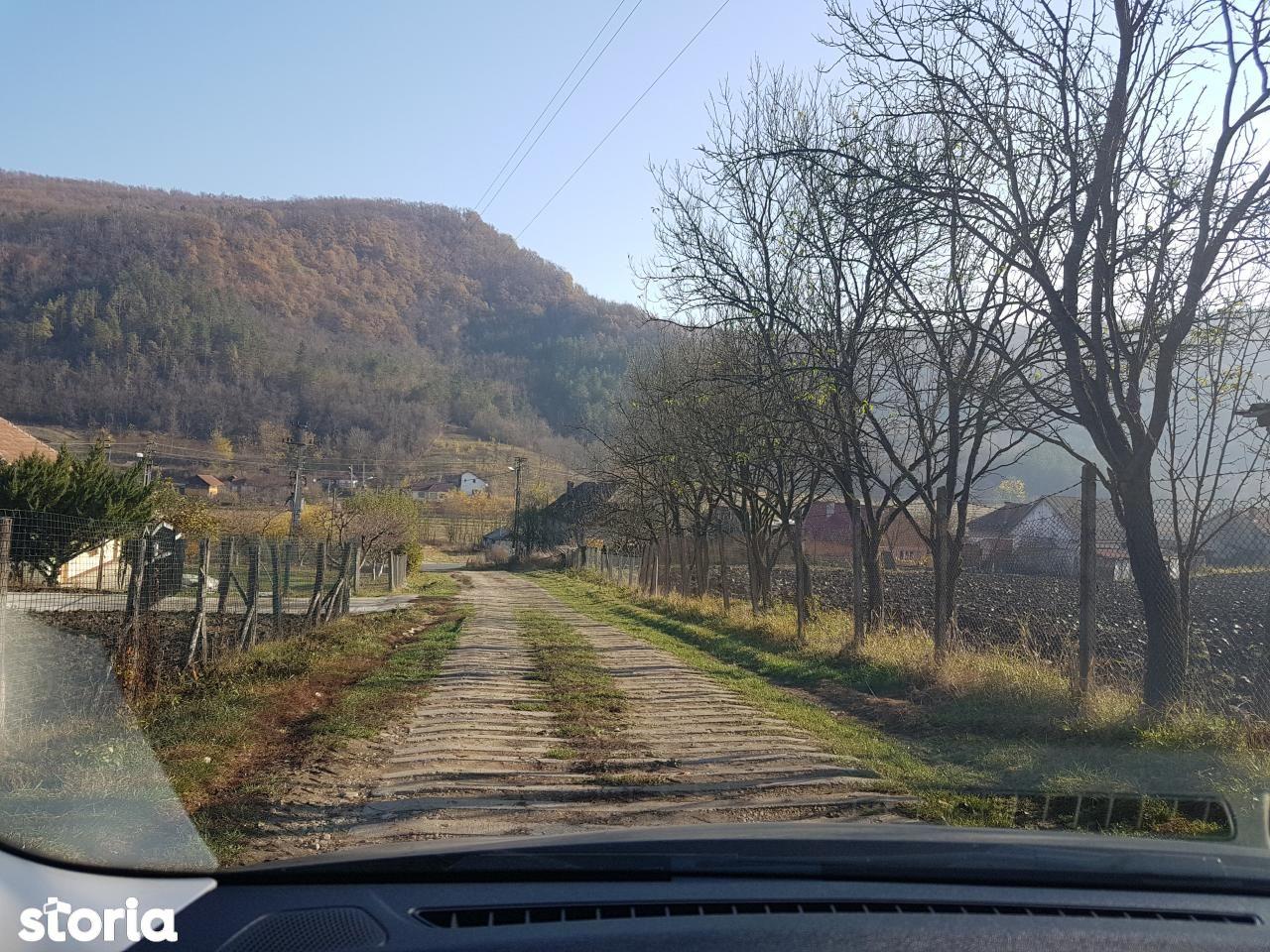 Depozit / Hala de vanzare, Cluj (judet), Sântioana - Foto 6
