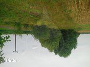 Teren de Vanzare, Bihor (judet), Sântion - Foto 2