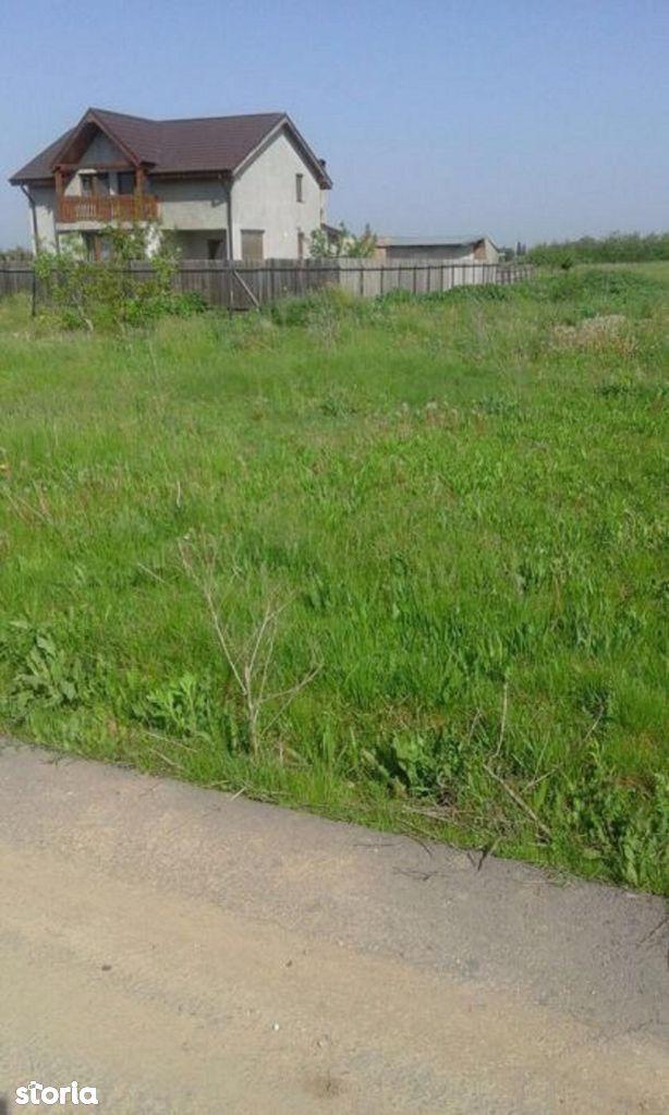 Teren de Vanzare, Giurgiu (judet), Ulmi - Foto 5