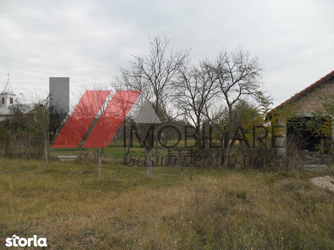 Teren de Vanzare, Darova, Timis - Foto 2