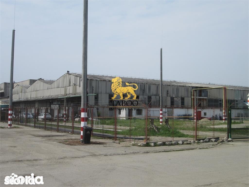 Depozit / Hala de vanzare, Alba Iulia, Alba, Barabant - Foto 1