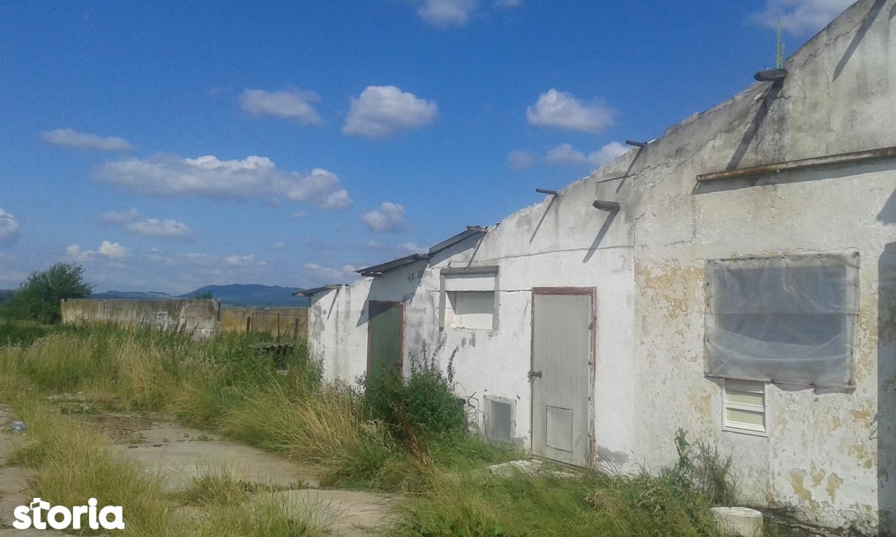Depozit / Hala de vanzare, Caraș-Severin (judet), Berzovia - Foto 3