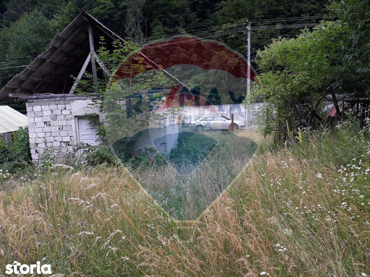 Teren de Vanzare, Neamț (judet), Izvoru Muntelui - Foto 7