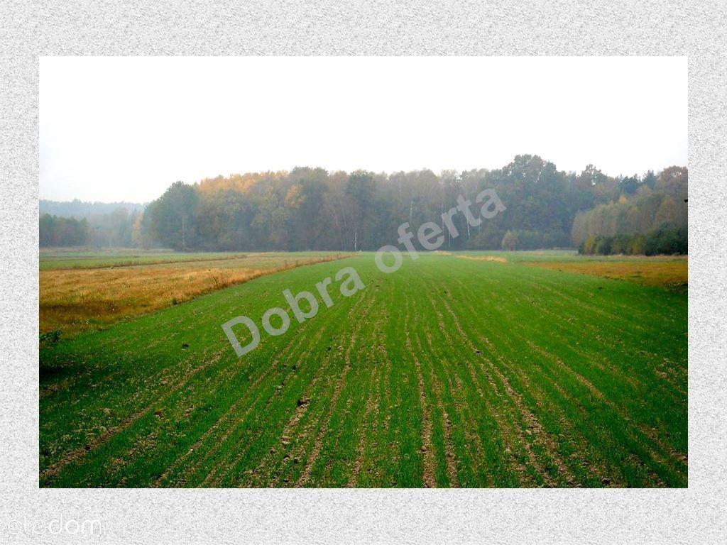 Działka na sprzedaż, Nowe Zalesie, miński, mazowieckie - Foto 5