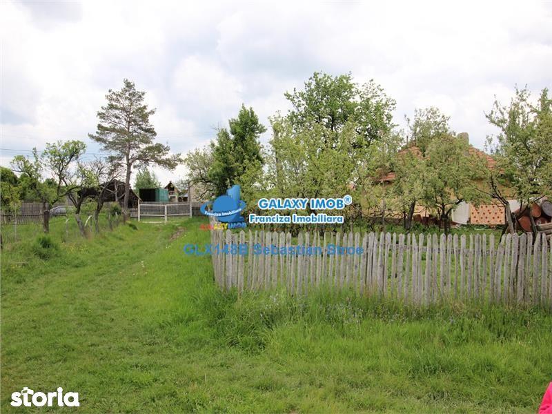 Teren de Vanzare, Argeș (judet), Morăreşti - Foto 13
