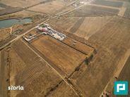 Teren de Vanzare, Arad (judet), Strada Ovidiu - Foto 6