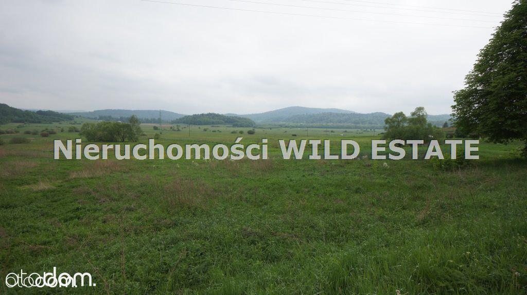 Działka na sprzedaż, Olszanica, leski, podkarpackie - Foto 2
