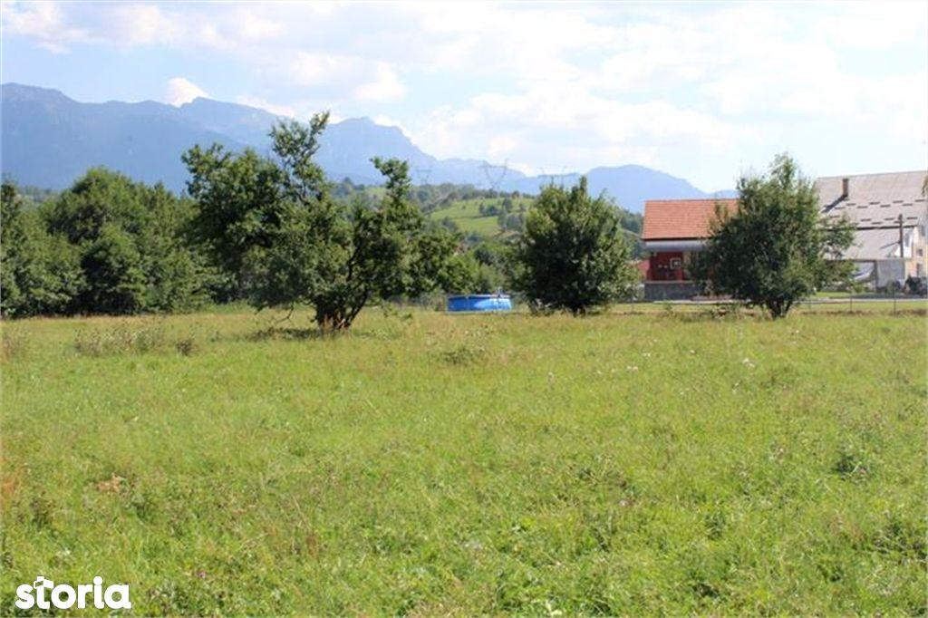 Teren de Vanzare, Brașov (judet), Tohanu Nou - Foto 9