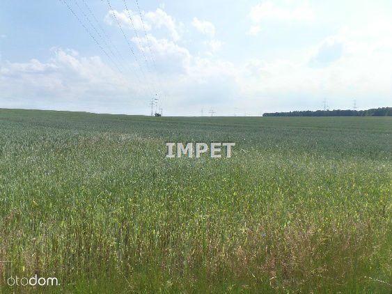 Działka na sprzedaż, Radzimów, zgorzelecki, dolnośląskie - Foto 3