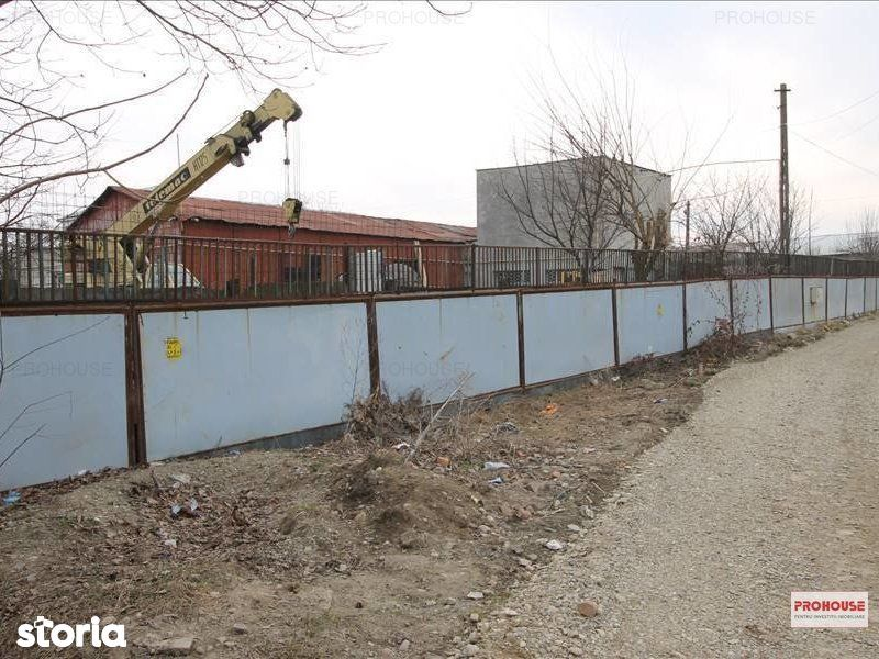 Depozit / Hala de vanzare, Bacău (judet), Strada Constantin Mușat - Foto 7