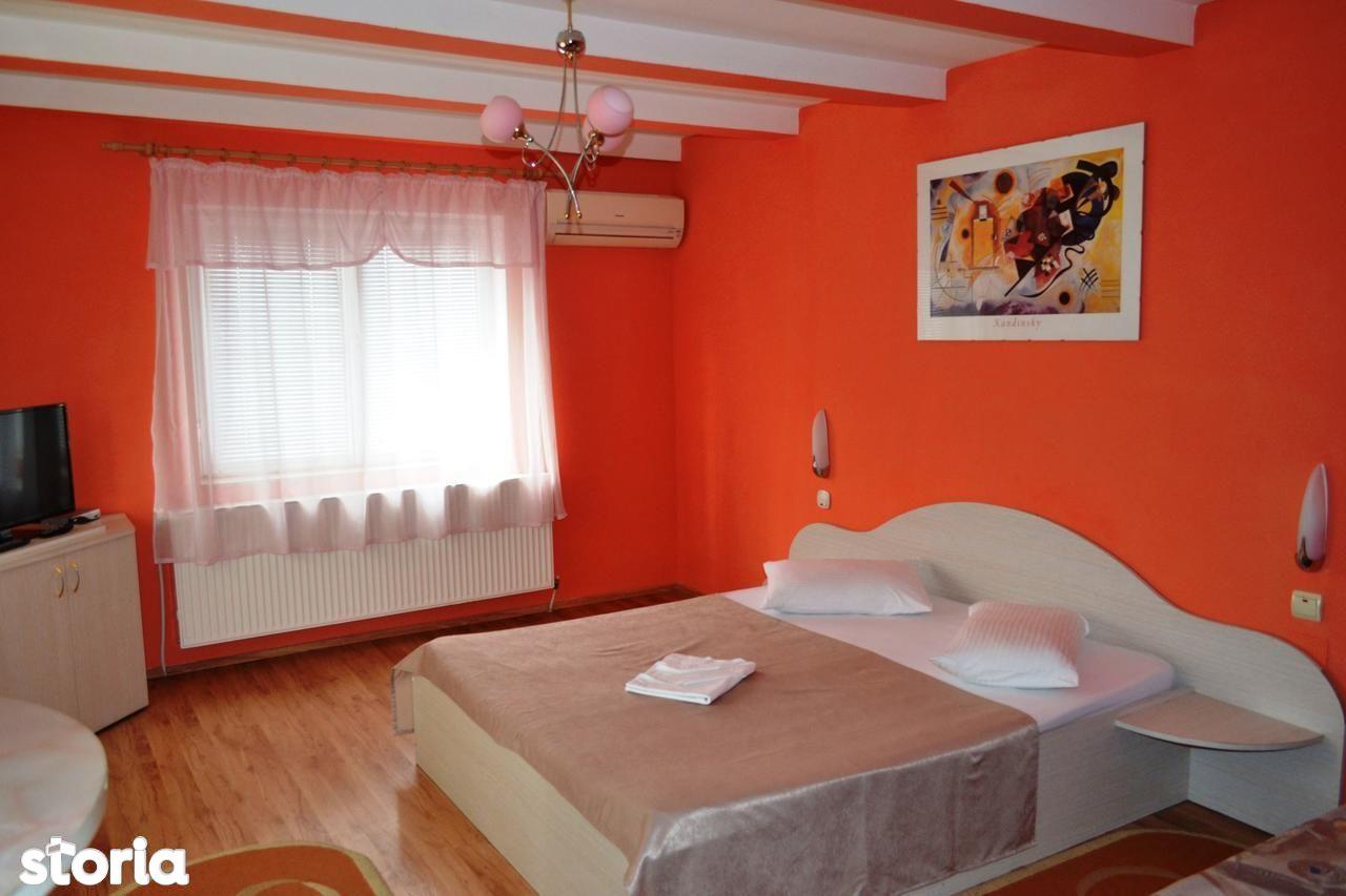 Spatiu Comercial de vanzare, Buzias, Timis - Foto 9