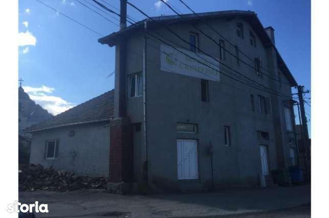 Depozit / Hala de vanzare, Bistrița-Năsăud (judet), Sângeorz-Băi - Foto 1