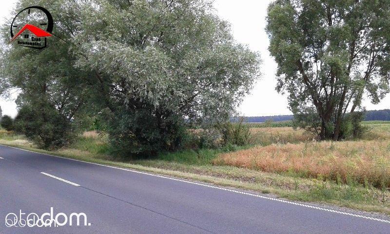 Działka na sprzedaż, Dąbrowa Biskupia, inowrocławski, kujawsko-pomorskie - Foto 4