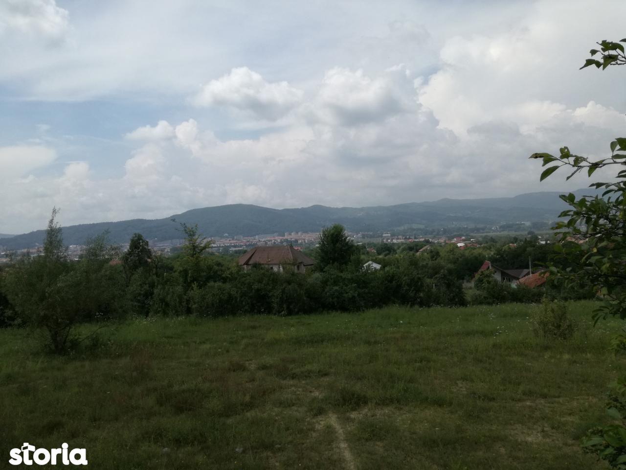 Teren de Vanzare, Vâlcea (judet), Ostroveni - Foto 7