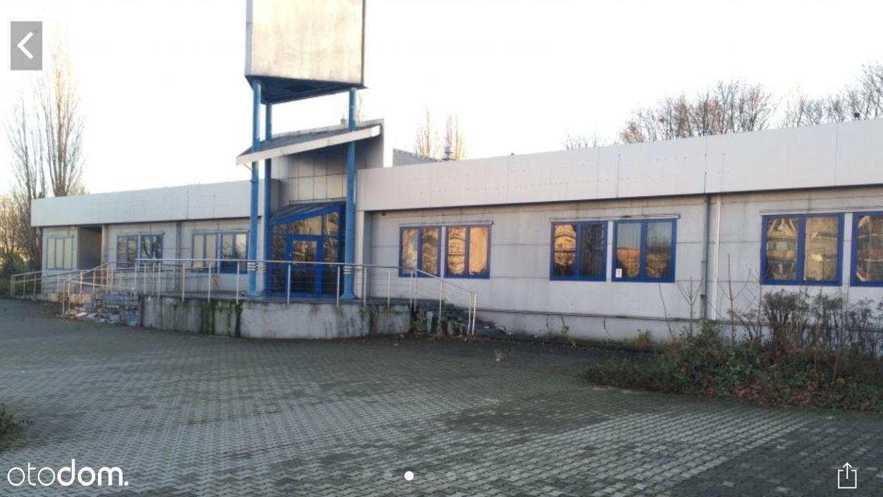 Hala/Magazyn na sprzedaż, Nysa, nyski, opolskie - Foto 9