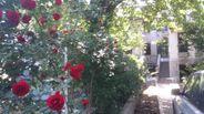 Casa de vanzare, Bucuresti, Sectorul 2, P-ta Sfantul Stefan - Foto 5
