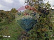Teren de Vanzare, Maramureș (judet), Piatra - Foto 5