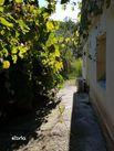 Casa de vanzare, Botoșani (judet), Strada Dragoș Vodă - Foto 3