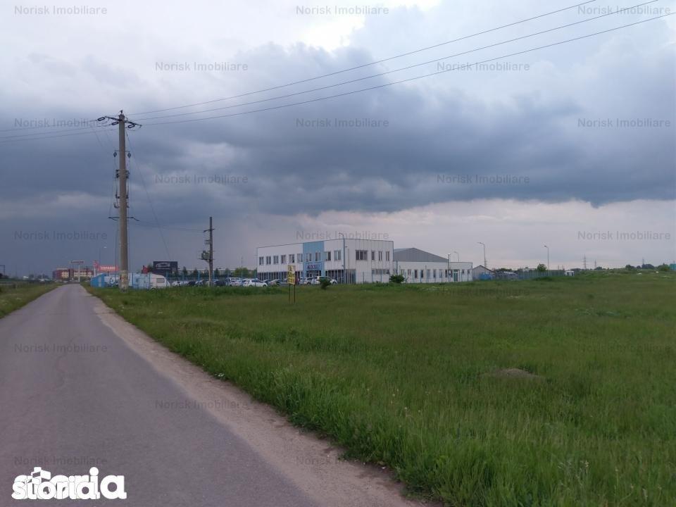 Teren de Vanzare, Catelu, Bucuresti - Ilfov - Foto 8