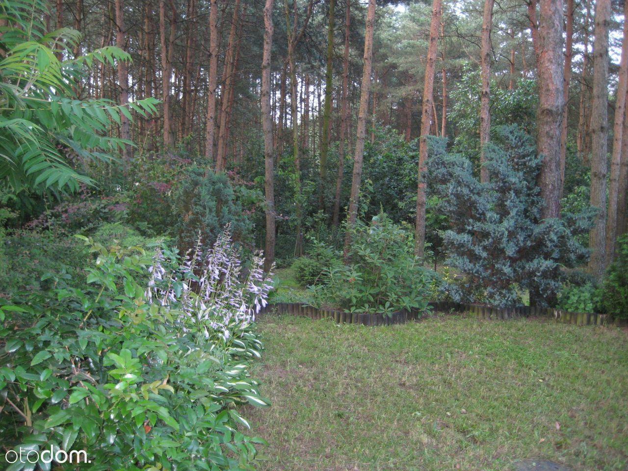 Dom na sprzedaż, Tarczyny, działdowski, warmińsko-mazurskie - Foto 9