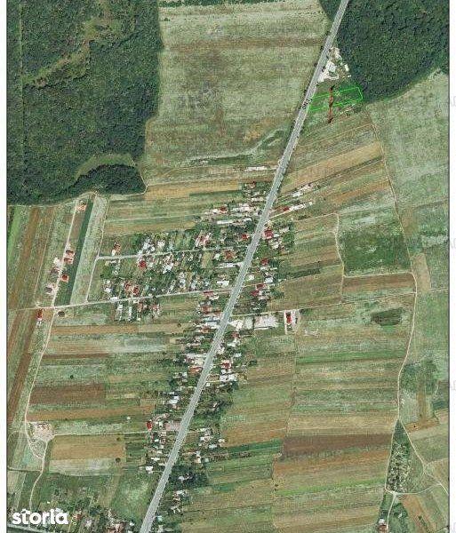 Teren de Vanzare, Tancabesti, Bucuresti - Ilfov - Foto 2